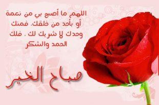 بالصور رسالة صباح الخير , اجمل الرسائل الصباحيه 936 10 310x205