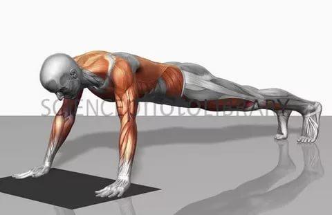 صورة تمارين اللياقة البدنية , ابرز صور تمارين اللياقة البدنية