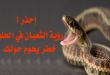 بالصور تفسير الثعبان في المنام , وجود الثعابين فى الحلم unnamed file 18 110x75