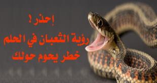 صورة تفسير الثعبان في المنام , وجود الثعابين فى الحلم