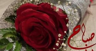 صورة صباح الورد والفل , اجمل البوستات لصباح جميل