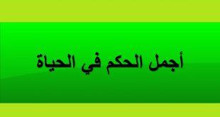 بالصور اجمل حكمة , حكم مفيدة ومؤثرة لا تفوتها unnamed file 215 310x165