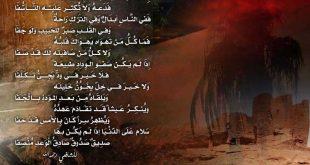 صوره ابيات شعر قصيره حكم , اجمل بيت شعر وحكم ومواعظ