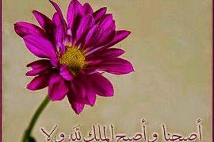 صوره صباح الخير ياعرب , اجمل الصور لعبارة صباح الخير يا عرب