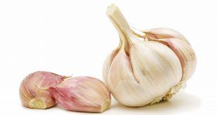 فوائد اكل الثوم , تعرف على فائدة الثوم في الوقاية من الامراض