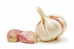 صورة فوائد اكل الثوم , تعرف على فائدة الثوم في الوقاية من الامراض