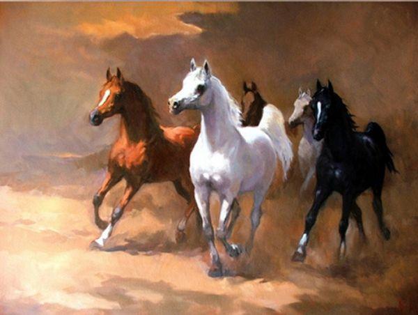 بالصور خيول عربية , اجمل الخيل العربي الاصيل 585 6