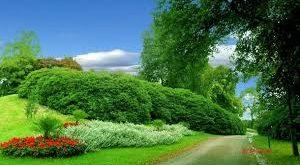 صورة تنزيل صور جميلة , اجمل صور لمناظر طبيعية