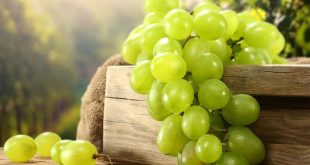 صورة فوائد العنب , اهم الفوائد التي نحصل عليها من العنب