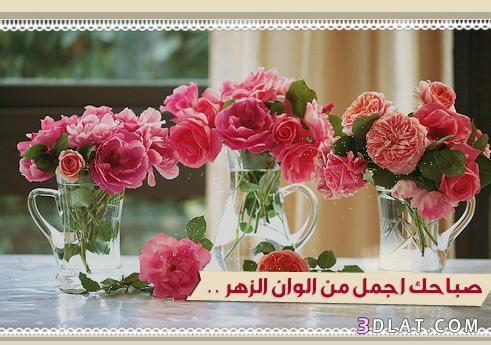 بالصور صباح الحب حبيبتي , عبارات الحب الصباحية تجدد حبك فى قلب حبيبتك 1480 2