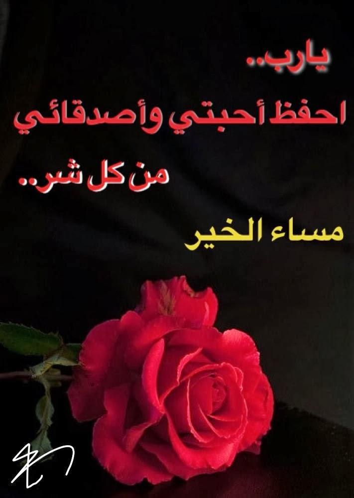 بالصور بطاقات مساء الخير , تحيات امرنا الاسلام بالحرص عليها 1501 4