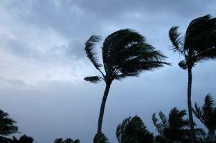 بالصور دعاء الرياح والعواصف , ادعية جميلة في هبوب الريح والعاصفة 8432 2 310x205