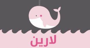 معنى اسم لارين في المعجم العربي , تفسير معنى اسم بناتى لارين في القاموس العربي