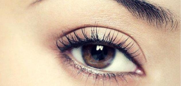 صور علاج السواد حول العين , كيفية اخفاء السواد حول منطقة العينين