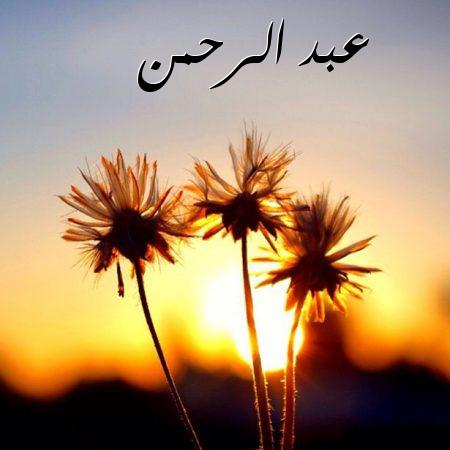بالصور صور اسم عبدالرحمن , اجدد صور لاسم عبد الرحمن 8609 6