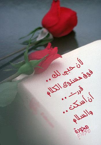 صورة ورود رومانسية مكتوب عليها , مجموعة من الاشكال الرقيقة من الازهار الرائعة