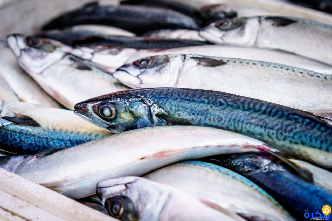 صور تفسير حلم شراء السمك لابن سيرين , رؤية شراء السمك لابن سيرين