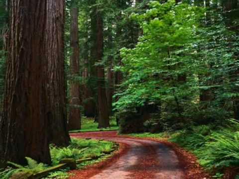 بالصور المناظر الطبيعية الخلابة , اروع مناظر خلقتها الطبيعة الخلابة 8748 9