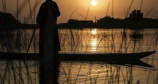 صور رواية ياسر وفاديه , قصة ورواية عن ياسر وفادية