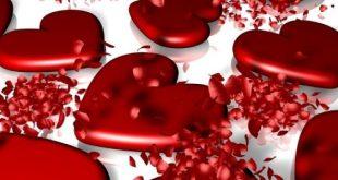 بالصور اي يوم عيد الحب , عيد الحب وميعاده فى اى شهر 8830 2 310x165