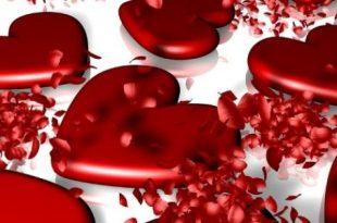 بالصور اي يوم عيد الحب , عيد الحب وميعاده فى اى شهر 8830 2 310x205