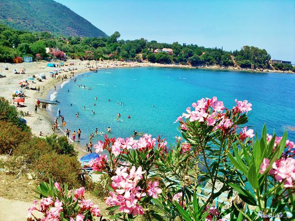 بالصور اجمل شواطئ الجزائر العاصمة , اروع الشواطئ للاسترخاء 11002 2
