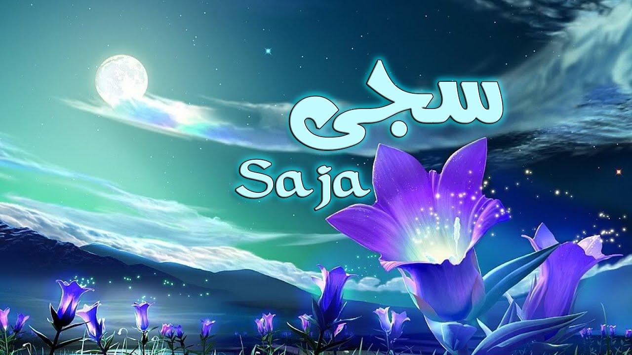 بالصور معنى اسم ساجي , معلومات عن اسم ساجي 11008 1