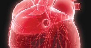 صور ثقب في القلب , تعرف على مشاكل ثقب القلب