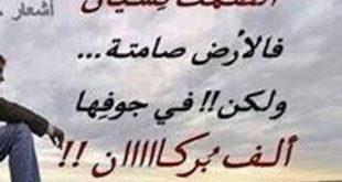 بالصور احلى ابيات الشعر , اروع ابيات لشعراء العرب 11056 1.jpeg 310x165