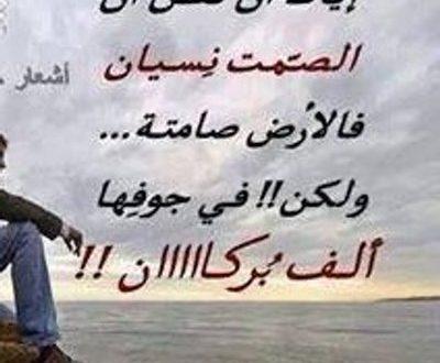 بالصور احلى ابيات الشعر , اروع ابيات لشعراء العرب 11056 1.jpeg 400x330