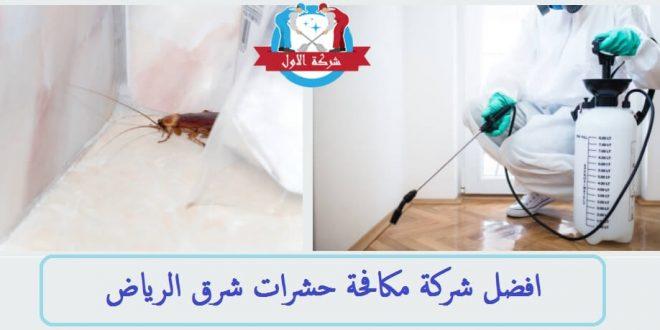بالصور شركة مكافحة حشرات شرق الرياض , الحشرات المزعجة والقضاء عليها 11061 3 660x330
