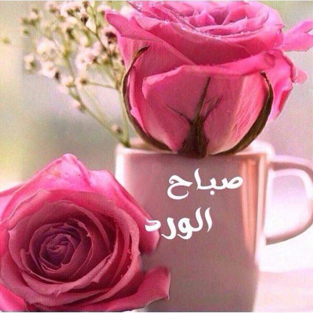 بالصور مقطع صباح الخير , احلى واجمل الصور المكتوب عليها صباح الخير 8539 8