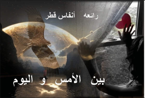بالصور روايات انفاس قطر , التعريق الخاص بروايات الكاتبة انفاس قطر 8559