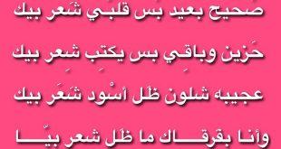 صور ابوذيات غزل عراقي , تعرف على شعر ابو ذيات