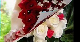 صور احلى بوكيه ورد عيد ميلاد , اروع اشكال بوكيهات الورود