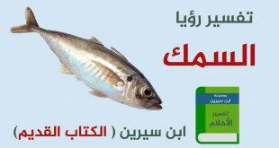 صور صيد السمك في المنام , راي المفسرون في صيد السمك في المنام