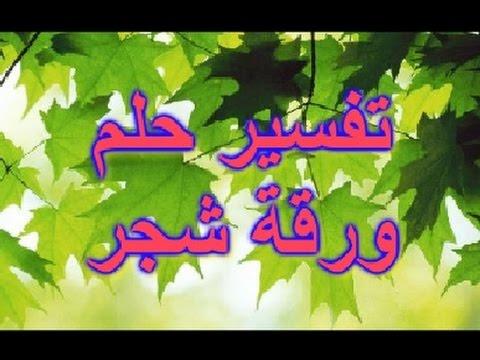 صور تفسير حلم الشجره الخضراء الكبيره , الشجرة الخضراء وما تشير اليه في المنام