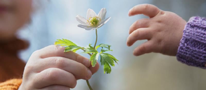 صور قصة عن العطاء , اهمية العطاء ومثال حقيقي للعطاء