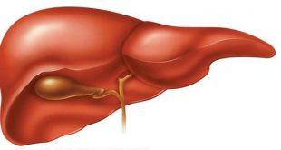 صور علاج دهون الكبد بالماء , علاج الدهون المتشبعة فى الكبد بشرب الماء