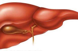 صورة علاج دهون الكبد بالماء , علاج الدهون المتشبعة فى الكبد بشرب الماء