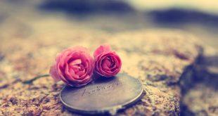 صور جميلة لغلاف الفيس بوك , اجمل غلاف للفيس بوك