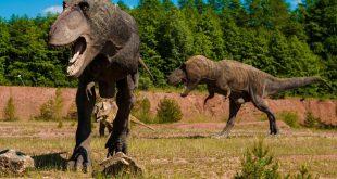 صور الديناصور في المنام , تفسير رؤية الديناصور في الحلم