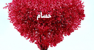 صور اسم حسام , اسم حسام رومانسي و متحرك
