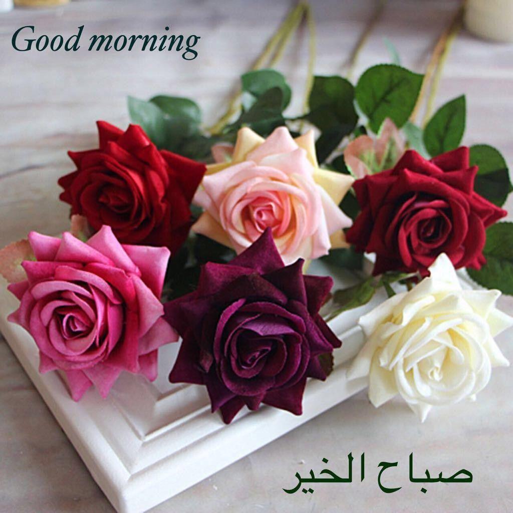 صور صور عن صباح , اجمل الصور عن صباح الخير مكتوب عليها كلام