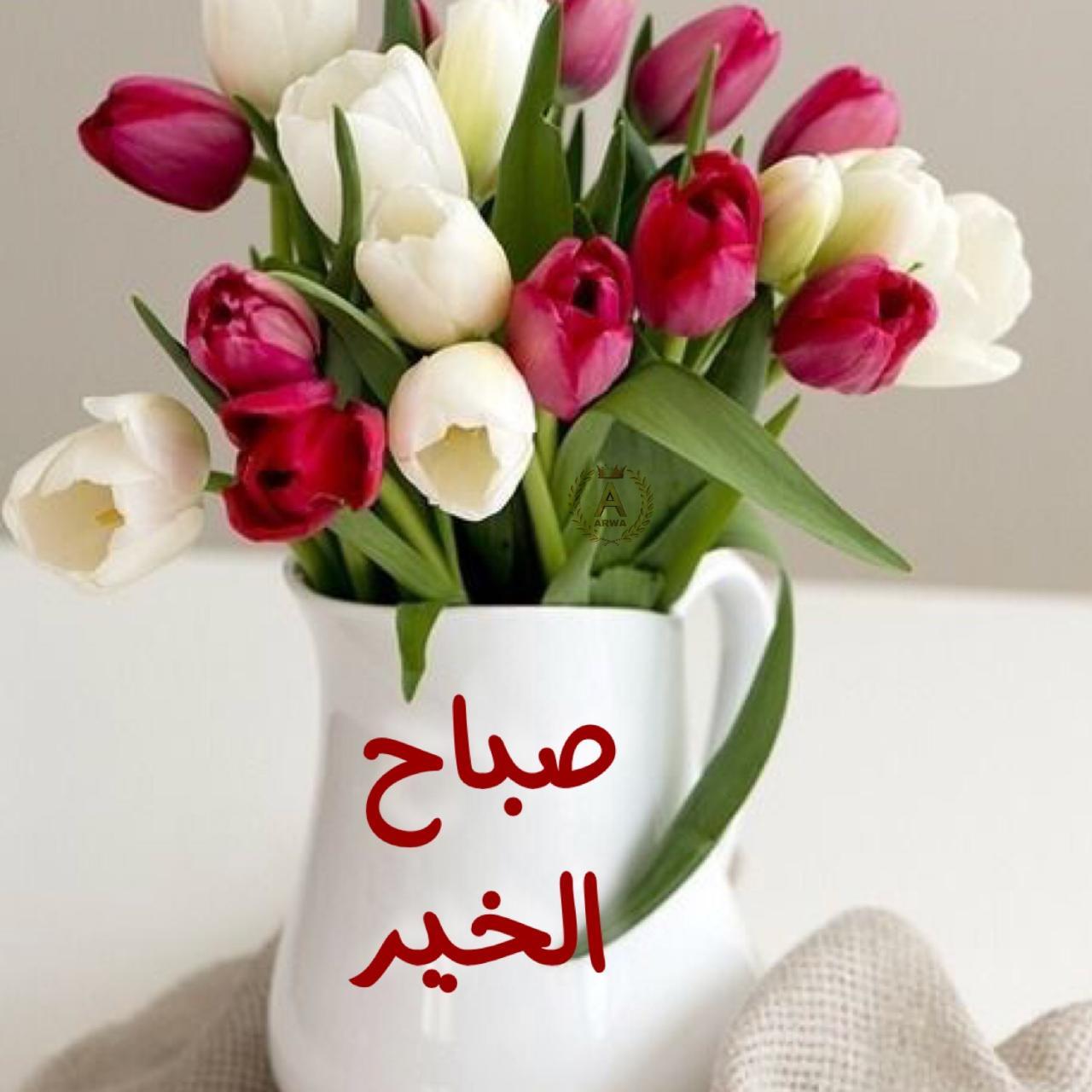صورة احلى صور صباح الخير , اروع صور لكلمة صباح الخير