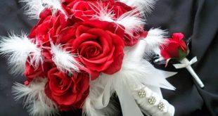 صورة صور عن الورد , مجموعه من صور الورد الرائعه