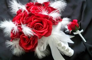 صور صور عن الورد , مجموعه من صور الورد الرائعه