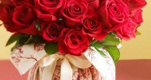صورة صور ورد جميل , اروع الورود الموجوده في العالم