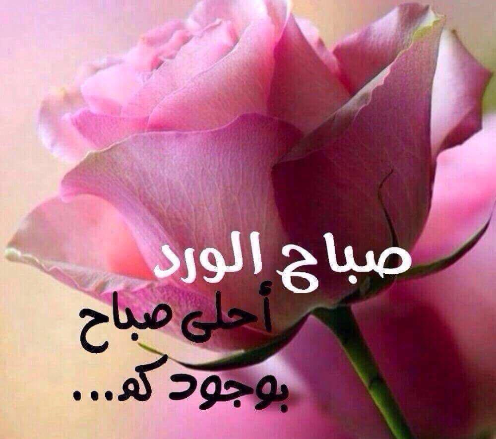 صورة صور صباح الخير حبيبي , ماذا تقول عندما يطلع النهار وانت مع حبيبك