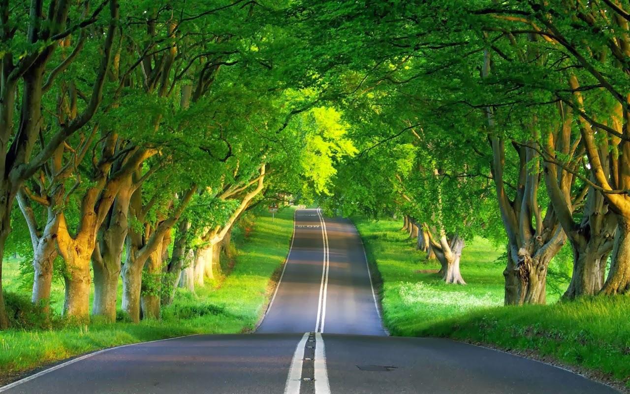 صورة صور طبيعه , صور تريح قلب الانسان 51 2